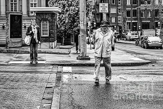 Bostonians by Elizabeth Dow