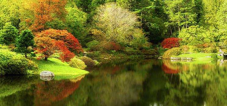 Botanical Garden in Northeast Harbor, Maine by Mihai Andritoiu