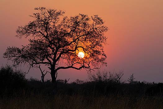 Botswana Sunset by John Rodrigues