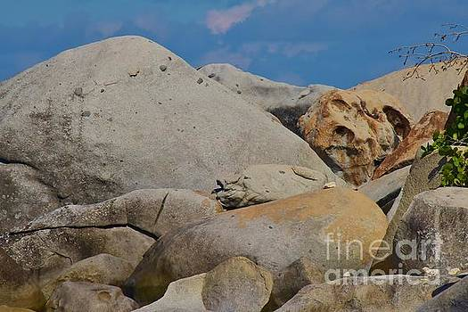 Boulders by Kathleen Struckle
