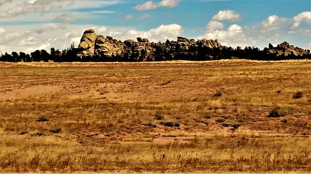 Boulders of Medicine Bow, Wyoming by Peggy Leyva Conley
