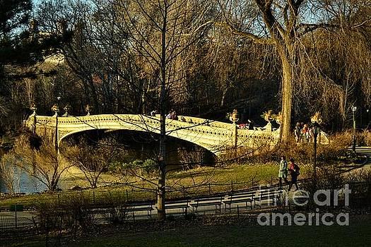 Bow Bridge - Central Park New York by Miriam Danar