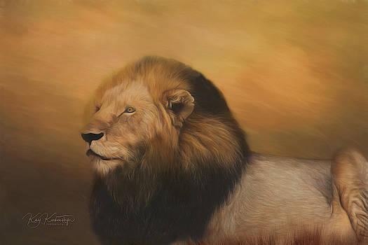 Braveheart Lion 5.0 by Kay Kochenderfer