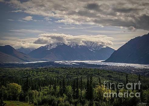 Breathtaking Scenic Drive - Alaska by Jan Mulherin