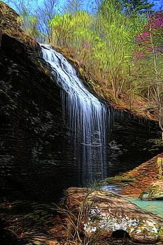 Bridal Veil Falls, Arkansas by Wesley Nesbitt