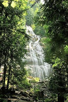 Susan Burger - Bridal Veil Falls British Columbia