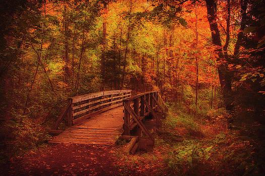 Bridge by Angela King-Jones