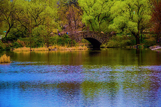 Bridge in central park by Stuart Manning