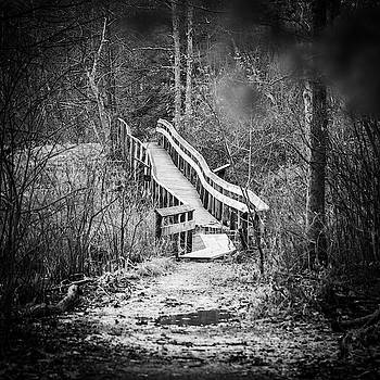 Bridge to Nowhere by Ryan Pelletier