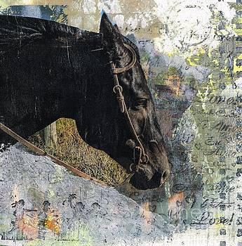 Bridled by Frances Marino