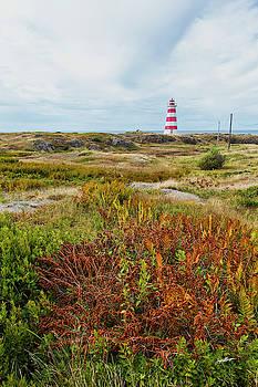 Brier Island Lighthouse by Jurgen Lorenzen