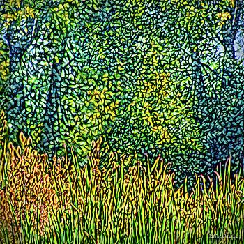 Bright Field Dreams by Joel Bruce Wallach