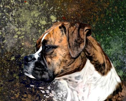 Brindled Boxer Portrait by Scott Wallace Digital Designs