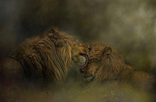 Brotherly Love by Kelley Parker