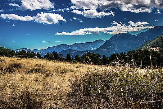 Brown Grass and Mountains by James L Bartlett