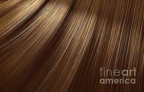 Brown Hair Blowing Closeup by Allan Swart