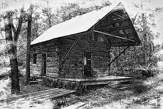 Browns Cabin  by Wesley Nesbitt