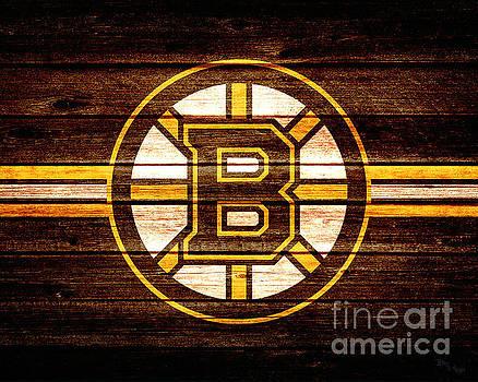 Bruins Fan by Billy Knight