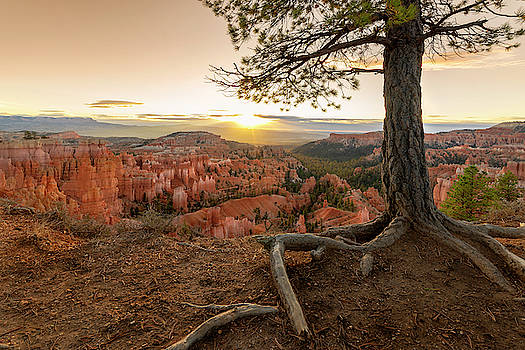 Brian Harig - Bryce Canyon National Park Sunrise 7 - Utah