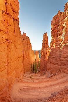Brian Harig - Bryce Canyon National Park Wall Street - Utah