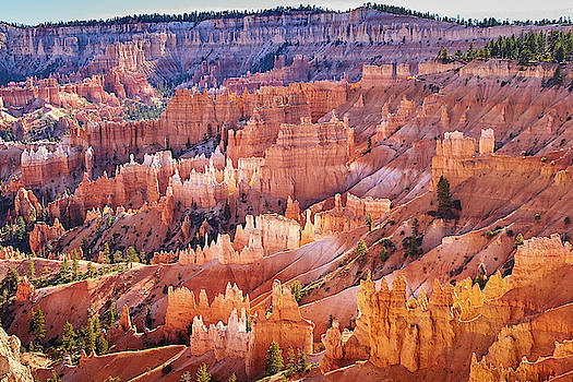 Bryce Canyon by Steve Kaye