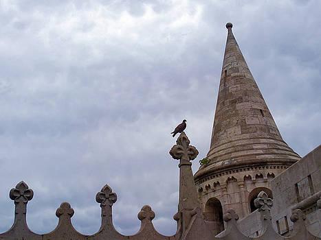 Budapest Castle Silhouette by Norma Brandsberg