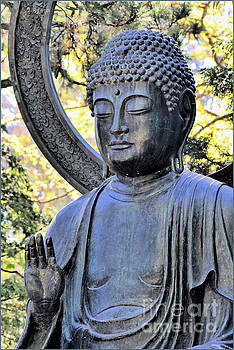 Buddha Of The Garden by Diann Fisher