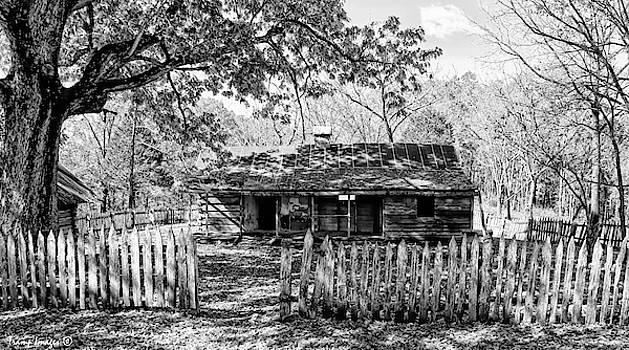 Buffalo Home by Wesley Nesbitt