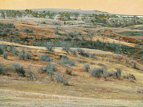 Buffaloberry Hill Reverie by Cris Fulton