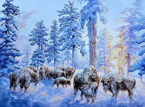 Buffalos At Sunrise by Hanne Lore Koehler