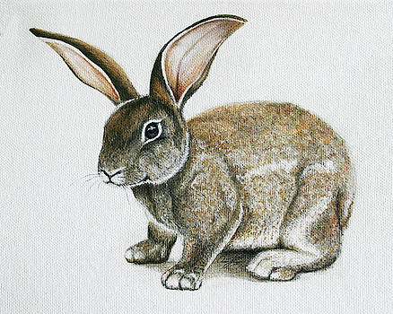 Bunny 1 by Ann Lauwers
