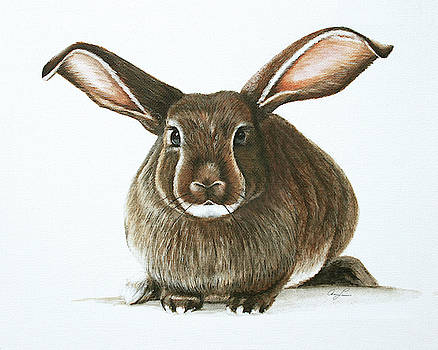Bunny 4 by Ann Lauwers