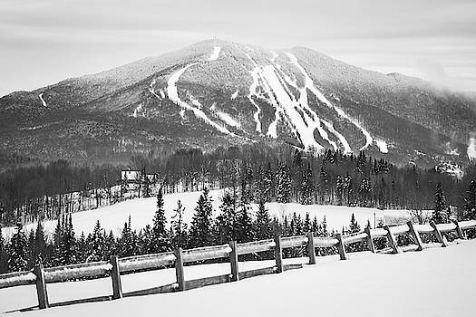 Burke Mountain Trails Fence BW by Tim Kirchoff
