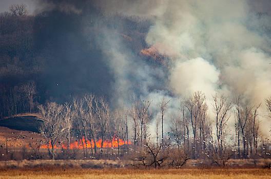 Jeff Phillippi - Burning Squaw Creek
