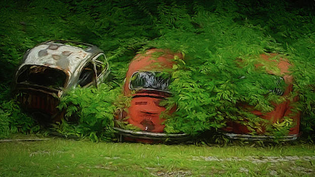 Bush Bugs by Ernie Echols