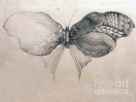 Butterfly for Jeffrey by Rosanne Licciardi