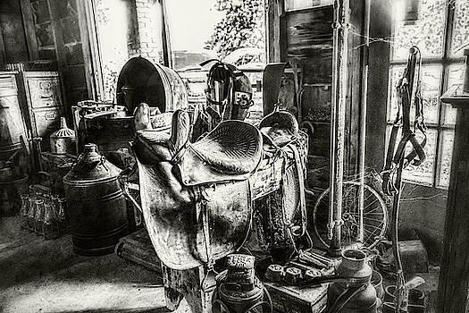 Sharon Popek - Buy a Saddle
