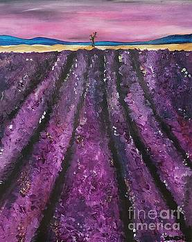 Bywater Hollow Lavender Fields by Ariana Dagan