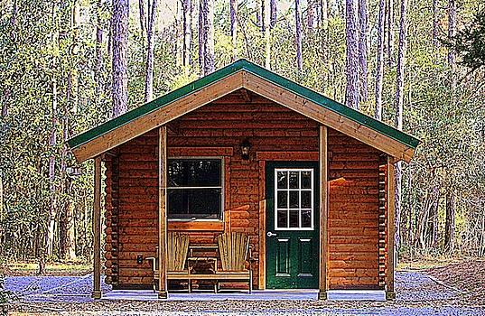 Cabin Camping by Cynthia Guinn