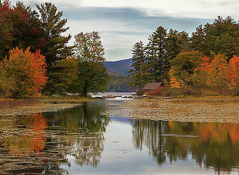 Cliff Wassmann - Cabin in the Maine Woods