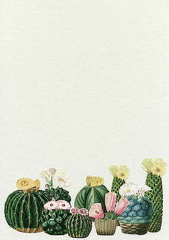 Cactus Garden by Cassia Beck