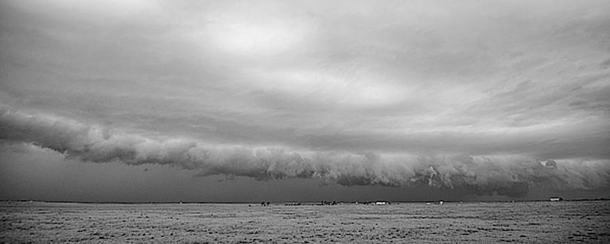 Cactus Roll Cloud BW by Scott Cordell