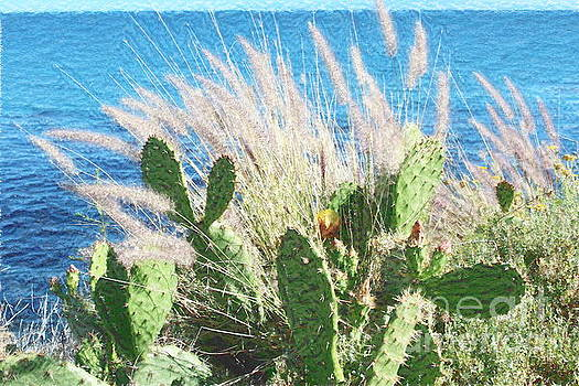 Cactus Water and Pampas by Katherine Erickson