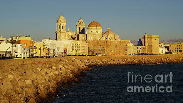 Cadiz Cathedral from Southern Field Spain by Pablo Avanzini