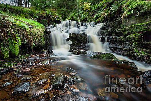 Caerfanell River by David MM Williams
