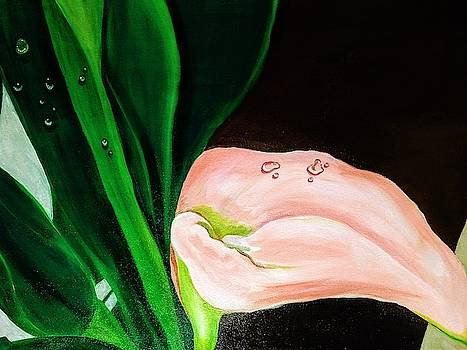 Cala Lily Dew by John Eric Goines