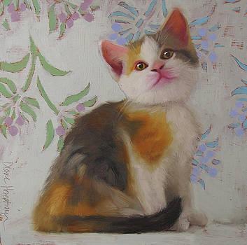 Calico Kitten by Diane Hoeptner