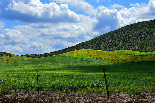 California Back Roads by Glenn McCarthy Art and Photography