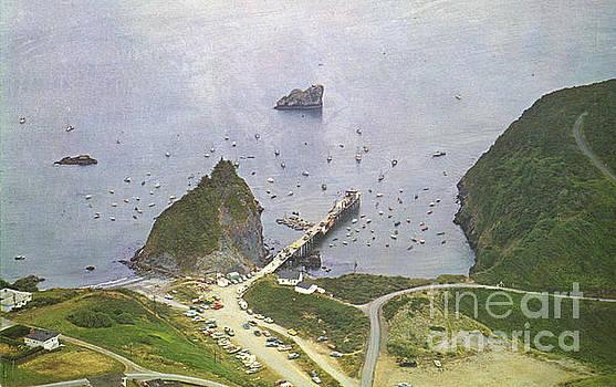 California Views Archives Mr Pat Hathaway Archives - Trinidad California Circa 1950