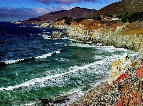 California Coast South of Mendocino by G Matthew Laughton
